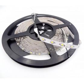 LED نواری سفیدآفتابی 3528-2835 بدون ژله 60PCS رول10متری