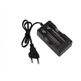 شارژر باتری لیتیوم-یون دوتایی